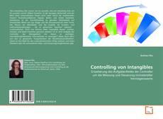 Copertina di Controlling von Intangibles