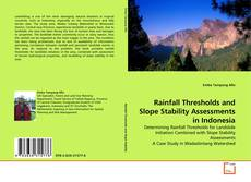 Bookcover of Rainfall Thresholds and Slope Stability Assessments in Indonesia