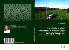 Entwicklung einer Indikatorik für nachhaltige Wirtschaftssysteme kitap kapağı