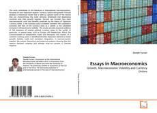 Essays in Macroeconomics的封面