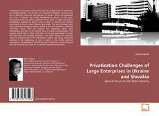 Bookcover of Privatization Challenges of Large Enterprises in Ukraine and Slovakia