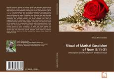 Capa do livro de Ritual of Marital Suspicion of Num 5:11-31