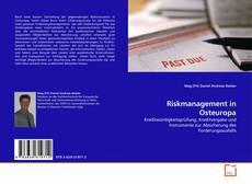 Portada del libro de Riskmanagement in Osteuropa