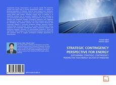 Portada del libro de STRATEGIC CONTINGENCY PERSPECTIVE FOR ENERGY