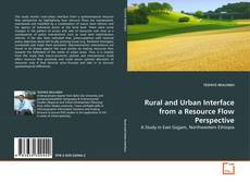 Bookcover of Rural and Urban Interface from a Resource Flow Perspective