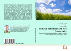 Bookcover of Climatic Variability and Rice Productivity
