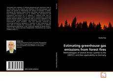 Estimating greenhouse gas emissions from forest fires kitap kapağı