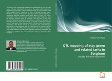 Buchcover von QTL mapping of stay green and related tarits in Sorghum