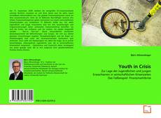 Bookcover of Youth in Crisis