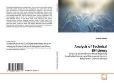 Portada del libro de Analysis of Technical Efficiency