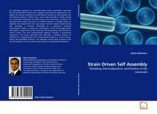 Borítókép a  Strain Driven Self Assembly - hoz