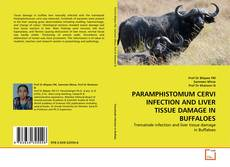 Bookcover of PARAMPHISTOMUM CERVI INFECTION AND LIVER TISSUE DAMAGE IN BUFFALOES
