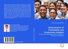 Buchcover von Determinants of Profitability and Productivity Analysis
