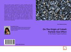 Bookcover of On The Origin of Cobalt Particle Size Effect