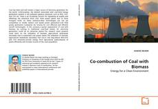 Couverture de Co-combustion of Coal with Biomass