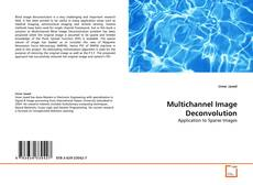 Capa do livro de Multichannel Image Deconvolution