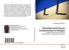Portada del libro de Peri-Urban Land Tenure Transformation in Ethiopia