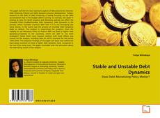 Bookcover of Stable and Unstable Debt Dynamics
