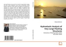 Hydroelastic Analysis of Very Large Floating Structures的封面