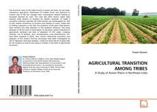 Borítókép a  AGRICULTURAL TRANSITION AMONG TRIBES - hoz