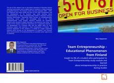 Обложка Team Entrepreneurship - Educational Phenomenon from Finland