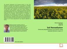 Borítókép a  Soil Remediation - hoz