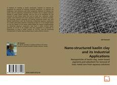 Обложка Nano-structured kaolin clay and its Industrial Applications