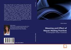 Buchcover von Meaning and Effect of Mayan Healing Practices