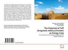 Обложка The Potential of Teff (Eragrostis tef(Zucc)Trotter) as Energy Crop