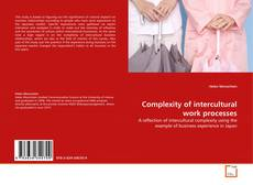 Complexity of intercultural work processes的封面