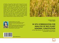 Bookcover of IN SITU HYBRIDIZATION FOR ANALYSIS OF RICE PLANT GENOMIC CONSTITUTION