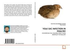 Bookcover of YOLK SAC INFECTION IN POULTRY