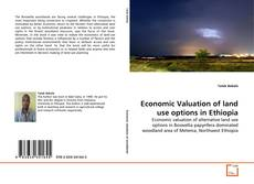 Bookcover of Economic Valuation of land use options in Ethiopia