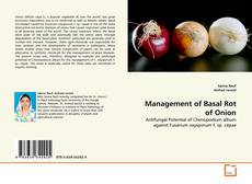 Bookcover of Management of Basal Rot of Onion