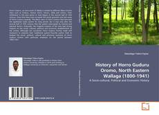 Couverture de History of Horro Guduru Oromo, North Eastern Wallaga (1800-1941)