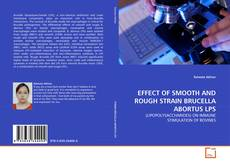 Bookcover of EFFECT OF SMOOTH AND ROUGH STRAIN BRUCELLA ABORTUS LPS