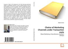 Обложка Choice of Marketing Channels under Transaction costs