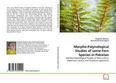 Bookcover of Morpho-Palynological Studies of some Fern Species in Pakistan