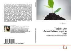 Bookcover of Sozial- und Gesundheitssprengel in Tirol