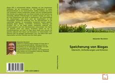Bookcover of Speicherung von Biogas