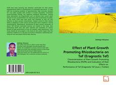 Bookcover of Effect of Plant Growth Promoting Rhizobacteria on Tef (Eragrostis Tef)