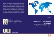 Buchcover von Opossums - Beuteltiere Amerikas
