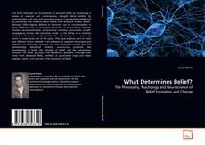 Buchcover von What Determines Belief?