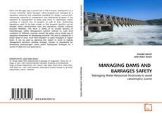 Borítókép a  MANAGING DAMS AND  BARRAGES SAFETY - hoz