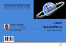 FLOOD RISK MAPPING kitap kapağı