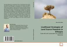 Bookcover of Livelihood Strategies of Land Scarce Peasants in Ethiopia