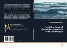 Bookcover of Flood Disasters and Livelihood Resilience in Northwest Ethiopia