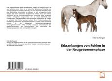 Couverture de Erkrankungen von Fohlen in der Neugeborenenphase
