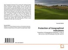 Bookcover of Protection of Geographical Indications