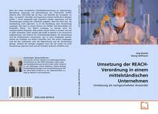 Buchcover von Umsetzung der REACH-Verordnung in einem mittelständischen Unternehmen